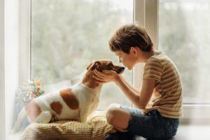 bambino maltratta animale