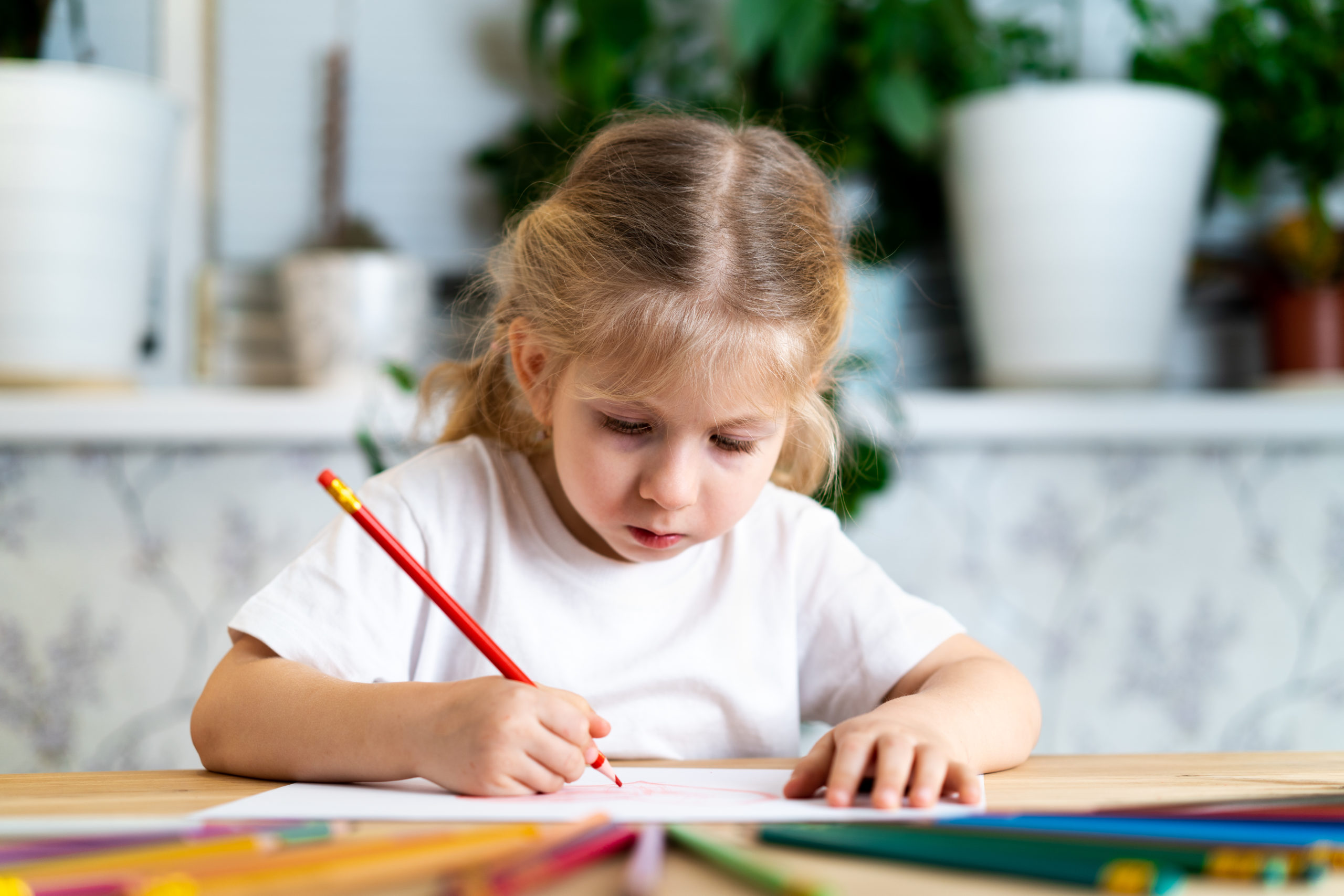 Disegna quello che vuoi, <br> ma impugna correttamente la matita